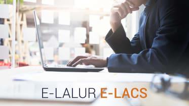 Thumbnail do post Quais as vantagens de usar o software fiscal E-LALUR ECF?