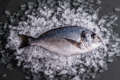 https://res.cloudinary.com/fish-for-thought/image/upload/f_auto/Seabream_1557414727