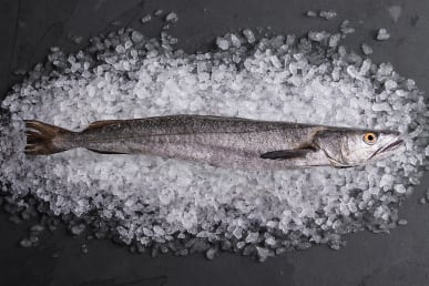 Provenance and Sustainability of Hake