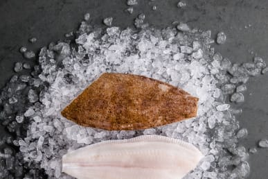 https://res.cloudinary.com/fish-for-thought/image/upload/f_auto/lemonsole_fillet_1532525932