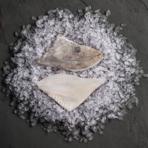 John Dory Fillet (Portion)
