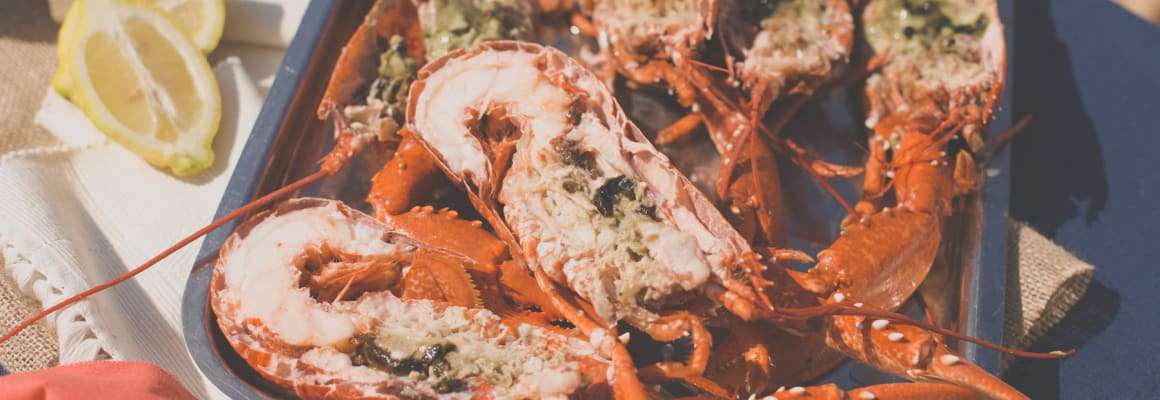 How to store, prepare and cook live lobster