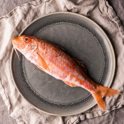red mullet whole fish
