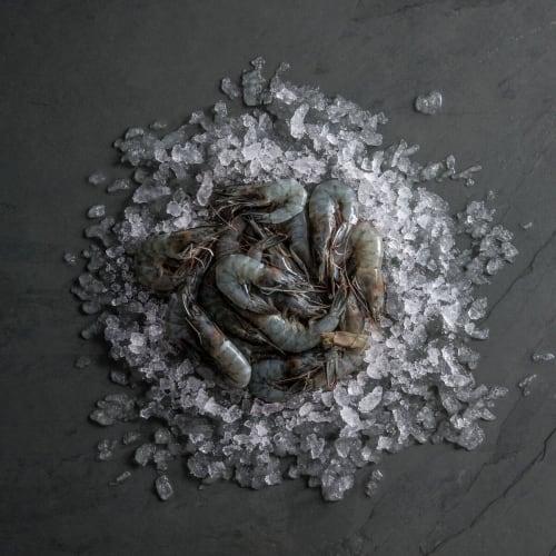 vannamei pacific king prawns