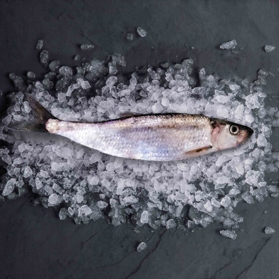 herring-whole