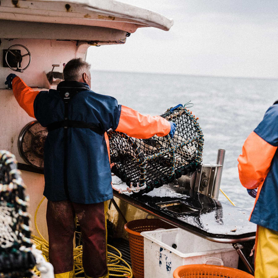Small scale local Cornish lobster fishermen