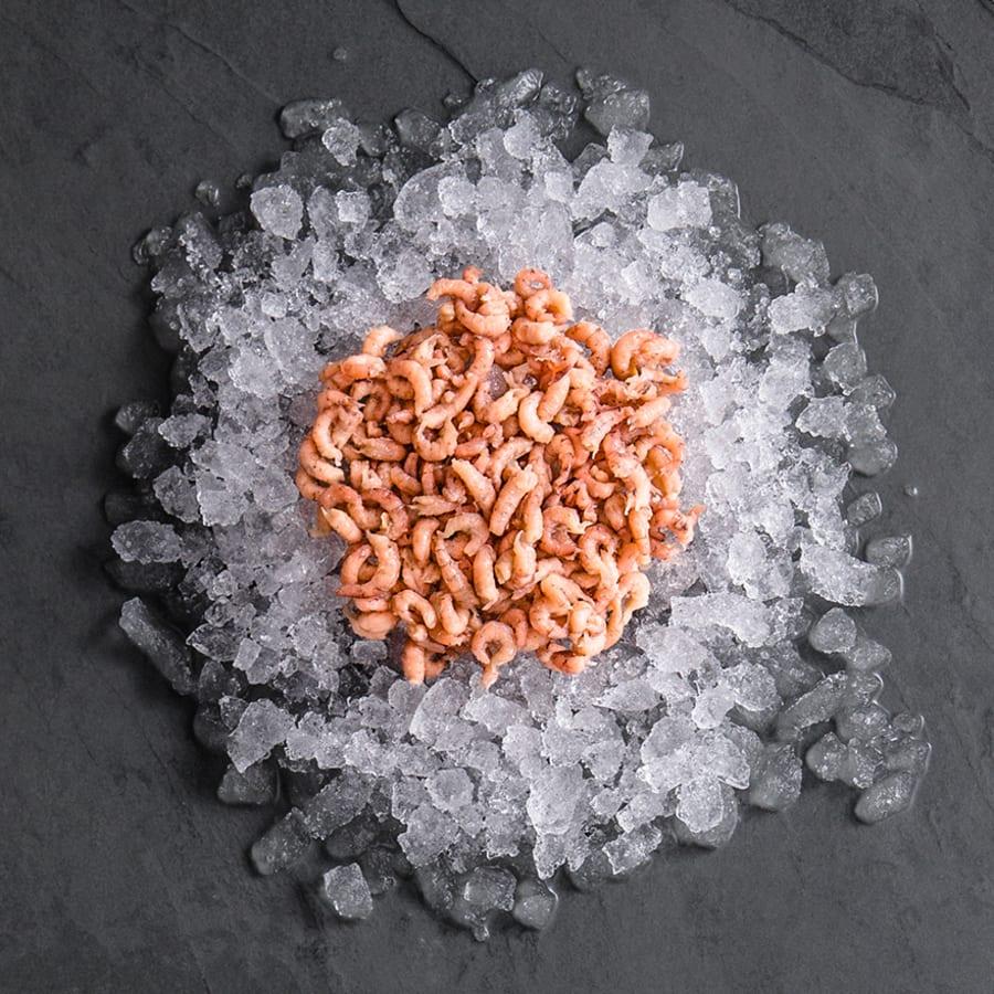 Peeled Brown Shrimp