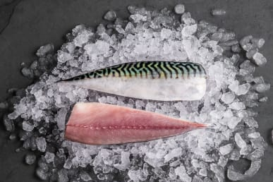 https://res.cloudinary.com/fish-for-thought/image/upload/mackerel_fillet_1532528849