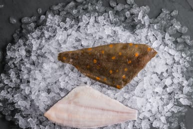 https://res.cloudinary.com/fish-for-thought/image/upload/plaice_fillet_1532596671