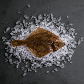 Plaice (Whole Fish)