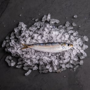 Cornish Sardines (Whole)