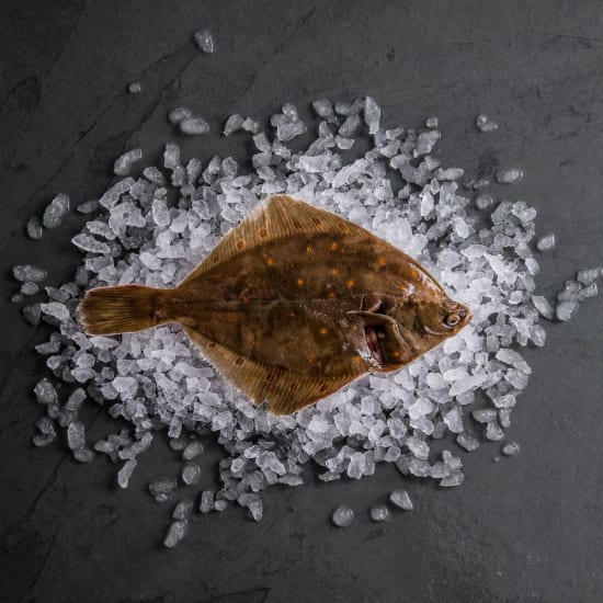 Plaice Pan-Ready