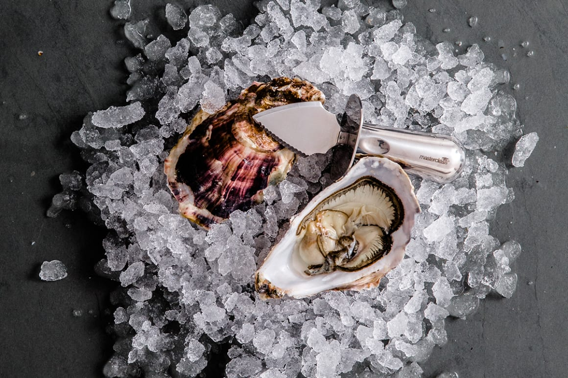 FFT Oysters