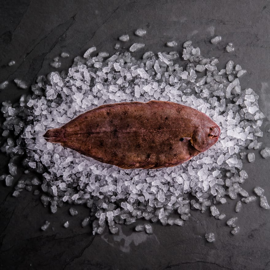 Dover Sole (Whole, Pan Ready)
