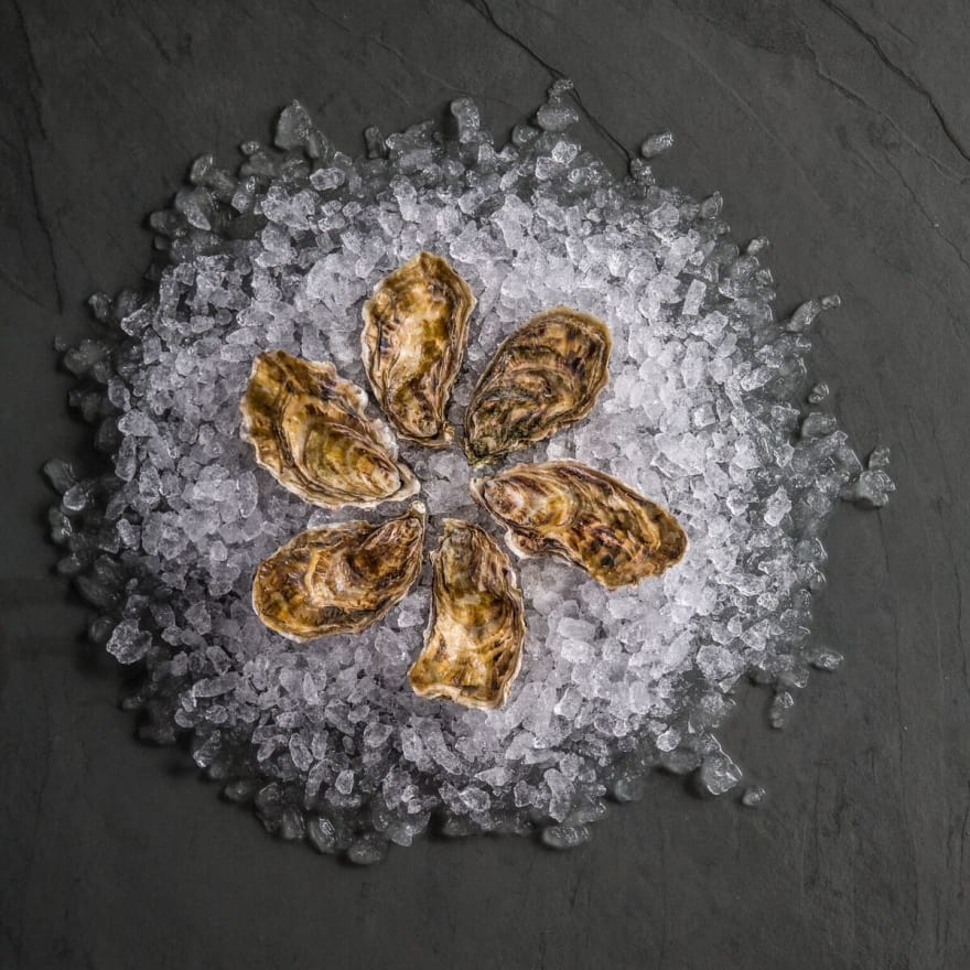 Porthilly Oysters Live - Half-Dozen