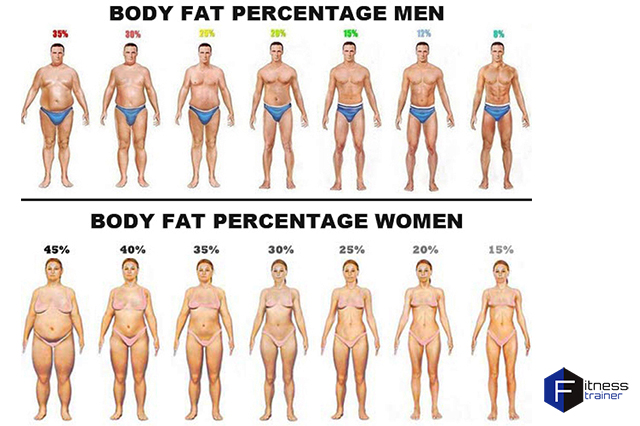 personal-trainer-body-fat-percentage