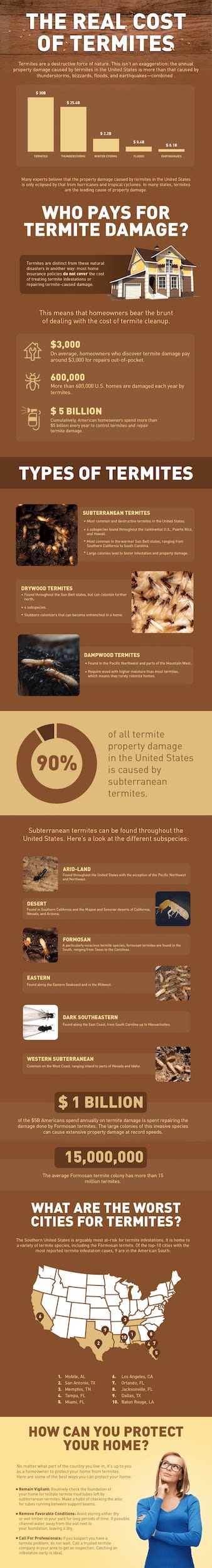 This infographic shows the real monetary costs of termites, nationwide, and how they can be considered a natural disaster in many communities.