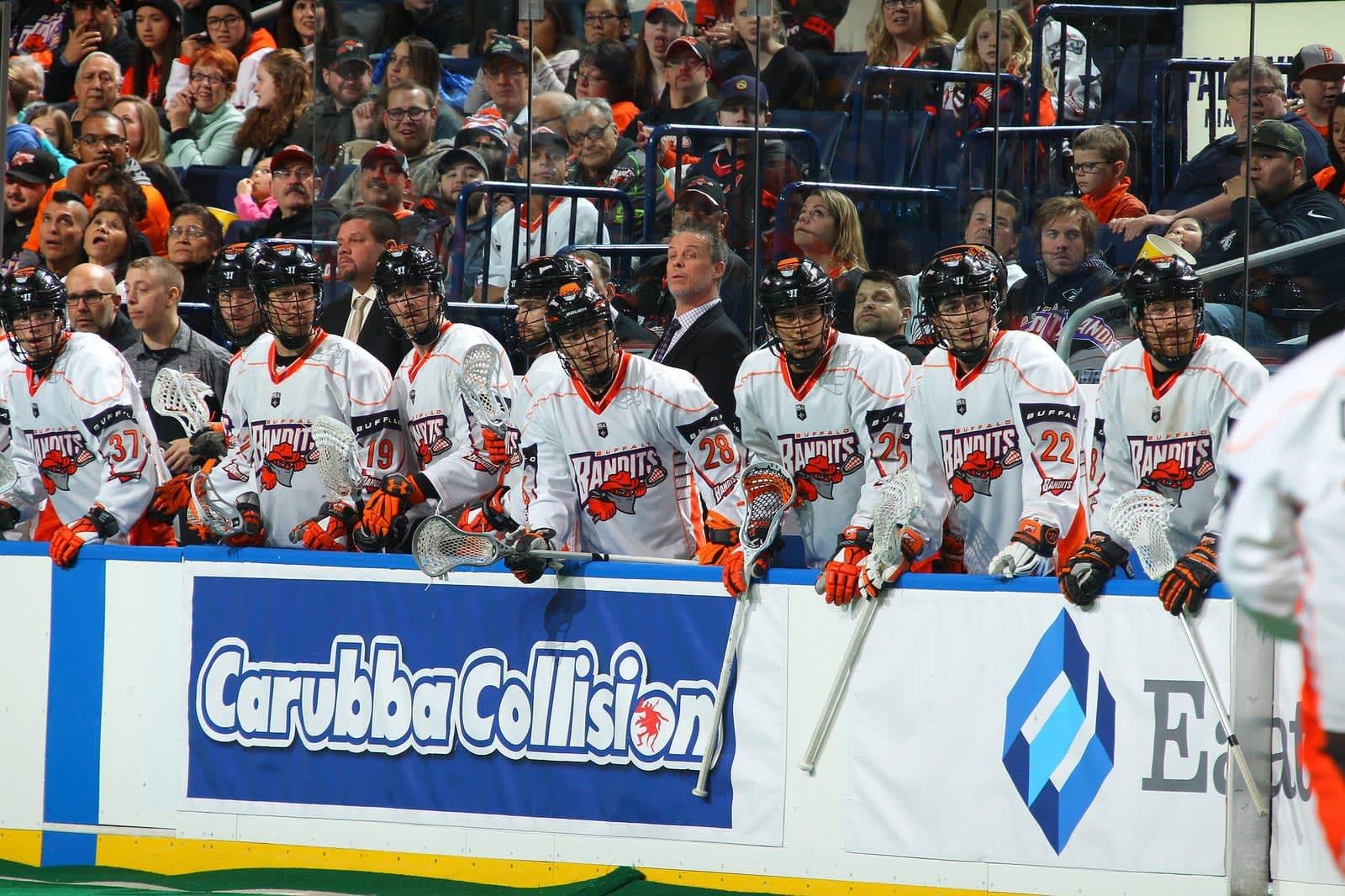 buffalo bandits nll national lacrosse league