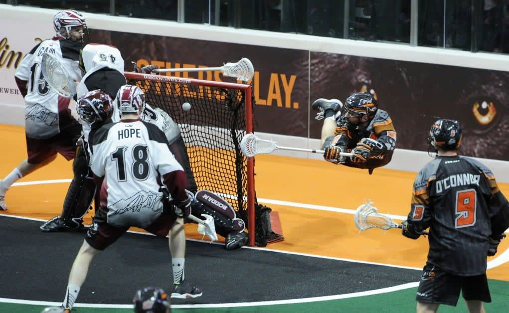 NLL - professional box lacrosse league