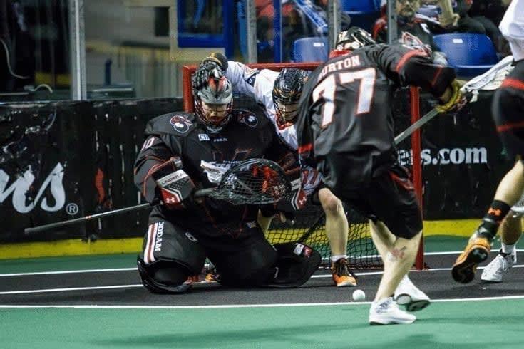 Buffalo Bandits vs Vancouver Stealth NLL Photo Credit: Garrett James