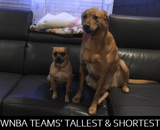 Some of tallest women in the world play in the WNBA, but every team has its tallest and shortest players. We've compiled them into one place.