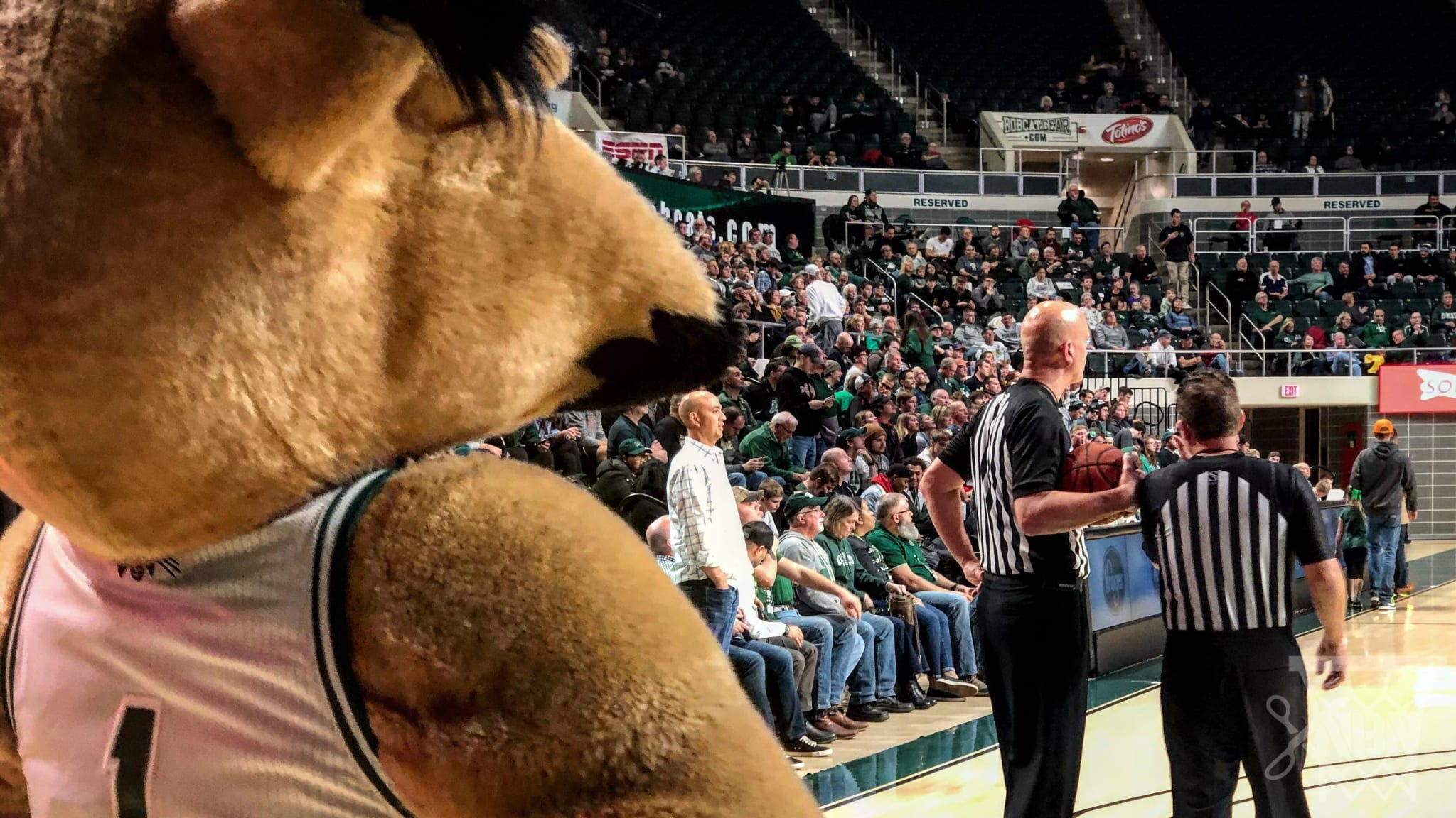 Ohio Basketball, Convocation Center Are College Hoops