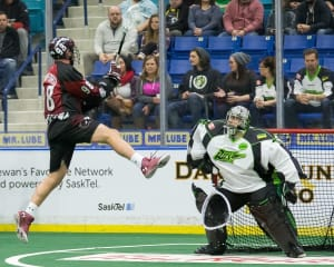 Saskatchewan Rush vs Colorado Mammoth NLL Week 5 2016 Photo Credit: Josh Schaefer / Saskatchewan Rush