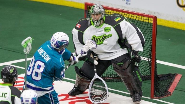 Aaron Bold Saskatchewan Rush Rochester Knighthawks NLL 2016 Photo: Calvin So