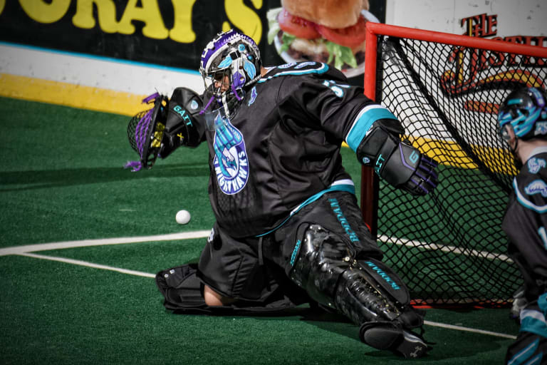 rochester knighthawks nll national lacrosse league 2018