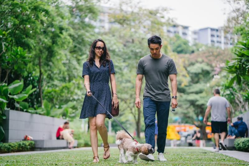 living with a dog in a condo, owning dog in condo, pet owners, condos, Toronto, how to own a pet in a small condo