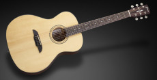 Framus FG 14 SV Vintage Transparent Satin Natural Tinted