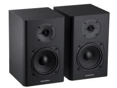 Kurzweil Powered Monitor speakers
