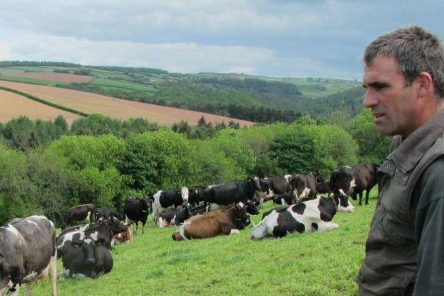 UK farmer