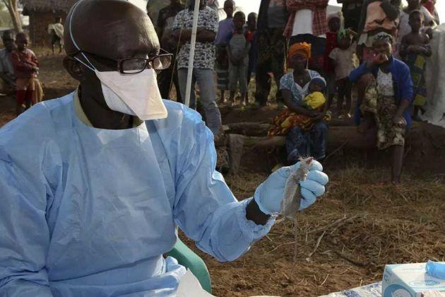 Lassa fever Nigeria