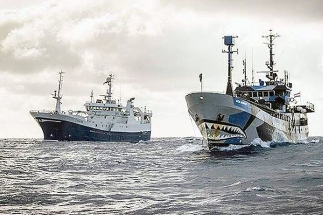 Chile illegal fishing