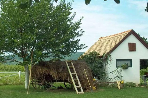 Serbia farm