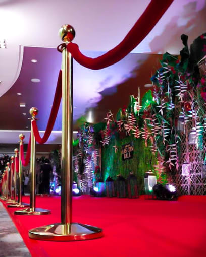 Flamingo: Branded Video Activations - Red Carpet and Stanchion Rentals
