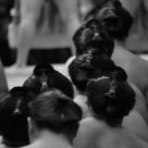 """Sumo wrestlers"" stock image"