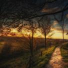 """Twilight Path"" stock image"