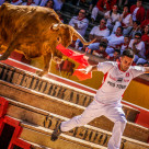 """The Bull Dodger of Spain"" stock image"