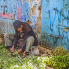 """""""Selling herbs in the souk"""" stock image"""