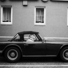 """TR4 with Dog"" stock image"