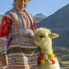 """Peruvian woman with baby Alpaca"" stock image"