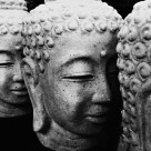 """Buddhas in B&W"" stock image"