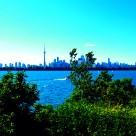 """Waterfront Toronto"" stock image"