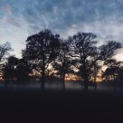 """Wollaton Hall and Deer Park part 3"" stock image"