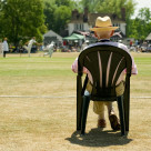 """""""watching the cricket"""" stock image"""