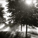 """Sun Showers"" stock image"