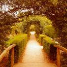 """A Walk Up The Garden Path"" stock image"