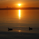 """Seattle sunset"" stock image"